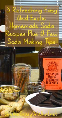 3 Refreshing Easy And Exotic Homemade Root Beer Recipes Plus A Few Soda Making Tips~AreWeCrazyOrWhat.net