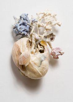 Anatomical heart by Janice Gordon
