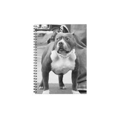 American Staffordshire terrier spiral notebook #pitbull #pitbulls #dog #staffordshire #terrier #gifts #notebooks #office #gifts #pet #animal