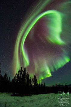 Aurora - Fairbanks, Alaska / By Marketa S Murray Aurora Borealis, Beautiful Sky, Beautiful Places, Northen Lights, Places In America, America America, Alaska Travel, Alaska Cruise, Alaska Usa