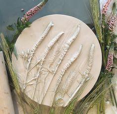 Plaster cast plant Clay by Marianna Makarova