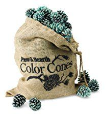 Fireplace Color Cones, Festive Fun Rainbow Flame Changing Pine Cones, Firepit Campfire Hearth Wood Burning Accessories for Holidays or Anytime - 5 LB Refill Bag