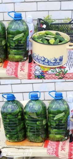 Russian Recipes, Pickles, Cucumber, Veggies, Homemade, Cooking, Desserts, Food, Canning