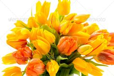 Realistic Graphic DOWNLOAD (.ai, .psd) :: http://hardcast.de/pinterest-itmid-1006896372i.html ... Beautiful bunch of tulip flowers spring ...  Liliaceae, Tulipa, bouquet, bunch, colorful, flora, flower, fresh, freshness, isolated, nature, no people, nobody, object, orange, plant, spring, tulip, white background, yellow  ... Realistic Photo Graphic Print Obejct Business Web Elements Illustration Design Templates ... DOWNLOAD :: http://hardcast.de/pinterest-itmid-1006896372i.html