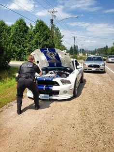 Ford Mustang Shelby GT 500 Pulled Over, Police Officer Photographs Engine Bay