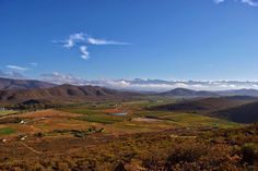 Views from the hill Cape Dutch, Grape Vines, Countryside, South Africa, The Row, Mountains, Landscape, Plants, Photos