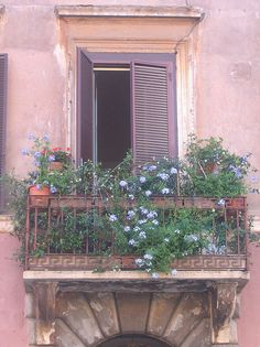 balcony covered with flowers window.