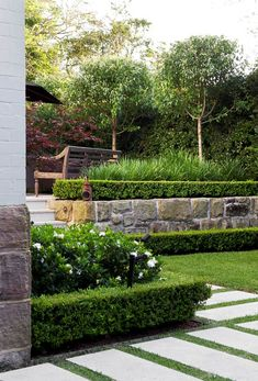 Raoul Van De Laak - Good Manors In the rear garden mop-top pears are pruned into spherical shape with lilly pilly hedging behind. In the foreground, layered hedging of buxus and Gardenia augusta Flori Landscaping Supplies, Front Yard Landscaping, Backyard Landscaping, Landscaping Ideas, Backyard Designs, Hedges Landscaping, Garden Hedges, Tropical Landscaping, Backyard Ideas