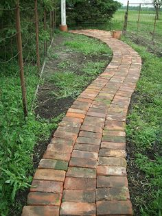 brick path with reclaimed bricks. Come on people! Lets reuse building materials in creative ways like this