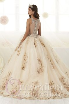 Floral Appliqued Quinceanera Dress by House of Wu 26884 Quince Dresses, 15 Dresses, Pretty Dresses, Fashion Dresses, Quinceanera Dresses Maroon, Quinceanera Party, Quinceanera Collection, Floral Applique Dress, Disney Princess Dresses