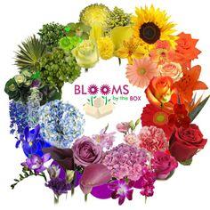floral arrangements | Designing Fresh Flower Arrangements: Working the Flower Color Wheel ...