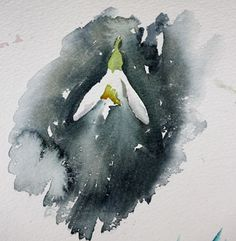 Small snowdrop study from Jean Haines