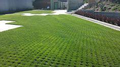 A New Design Idea for Drivable Grass Permeable Pavers - A Designer Driveway