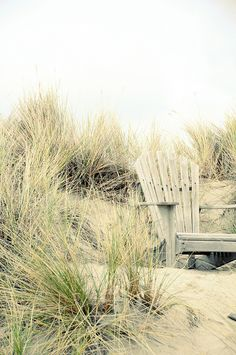 (via Pin by Lisa ★ Berry on Cottage by the Sea Cottages By The Sea, Beach Cottages, Porches, Costa, La Reverie, Stinson Beach, Green Beach, Sand And Water, I Love The Beach