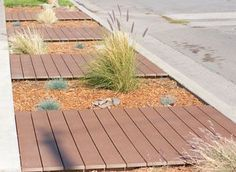 landscaping for Parkways that are drought tolerant - Google Search