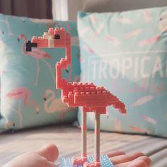 近突然愛上 #flamingo 💋🌴 #letsflamingle 💕 #positivevibes 🌞 #フラミンゴ #紅鶴 #火烈鳥 #nanoblock #flamingofever @theflamingofeve