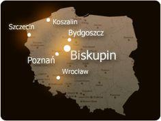 Biskupin - animacja Cards Against Humanity, Film, Folklore, Creatures, Polish, Nature, Literatura, Historia, Poland