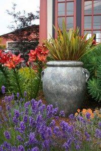 Mediterranean-Garden-Design-Creating-a-Tuscan-Garden-14.jpg