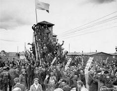 Crónica fotográfica de la Segunda Guerra Mundial 7217 - Maldito Insolente