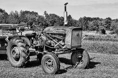 Rusty Farmall Tractor