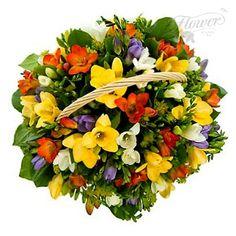 http://www.flowerland.ru/image/cache/data/korzina_s_freziyami-600x600.jpg