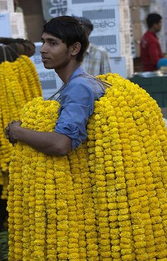 Marigold Seller at Flower Mandi, Hanuman Mandir, New Delhi