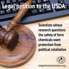 "USDA scientists are censored and persecuted when their research conflicts with the ""research"" promoted by Big Ag and Biotech. Check it out: http://orgcns.org/1GSiJ6y"