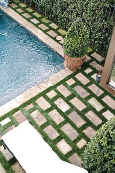 Subway patio pavers, green grass grout