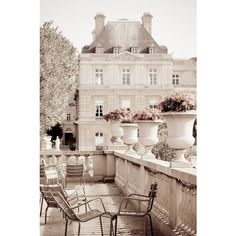 Paris Photography Luxembourg Garden, Paris photograph decor, Neutrals,... ❤ liked on Polyvore featuring home, outdoors and pictures