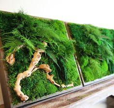 Eco-Friendly Botanical Wall Art Brings the Self-Sustaining Beauty of Nature Indoors - My Modern Met Vertikal Garden, Moss Graffiti, Vegetable Painting, Moss Decor, Forever Green, Indoor Outdoor, Moss Art, Design Jardin, Green Wall Art