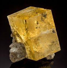 Bright golden-yellow Fluorite cube on matrix from Indiana!  From the May Stone and Sand Quarry, Fort Wayne, Allen County, Indiana.