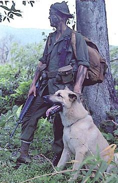 Vietnam War Dog