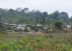 Embera Tribe Village In The Rain Forest, Bajo Chiquito, Darien Province, Panama - Eric Lafforgue