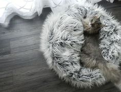 The Nuzzo Pet Bed is a warm, soft, pillowy nest that your cat or dog will love curling up in! It is essentially a faux fur sphere made from extremely