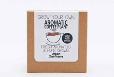 Creating your own aromatic coffee plant is as simple as adding water with this kit. It includes a planter, seeds and all instructions you need know.