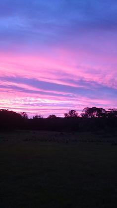 Summer sunset at 'Cooyong' Braidwood NSW AUSTRALIA