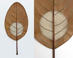 Artist Transforms Brittle Leaves into Delicate Crocheted Sculptures - My Modern Met