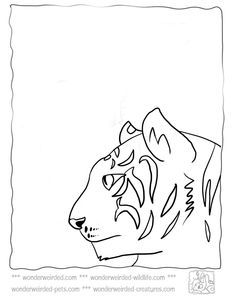 Tiger Coloring Pages at www.wonderweirded-wildlife.com/ tiger-coloring-pages.html ,Echo's Free Coloring Pages Tiger Pictures to Color, from cute Tigers roaming about to Fierce Tiger Pictures from our Wildlife Coloring Pages Collection free to download