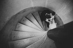 Mariage à St Cyr au Mont d'Or. Reception au Manoir de la Garde (69). Photographe de mariage à Lyon | Ela & the Poppies Photography | Photographe Mariage Lyon Rhone Alpes | Photographe Mariage Biarritz Cote Basque | International Wedding Photographer