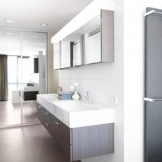 Grey + Light Floor Gloss Grey Vanity Design, Pictures, Remodel, Decor and Ideas - page 4