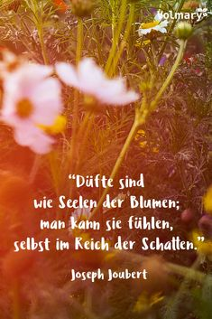 Vita Sackville West, Essayist, German Words, Flower Quotes, Sayings, Garden, Ideas, African Proverb, Floral Quotes