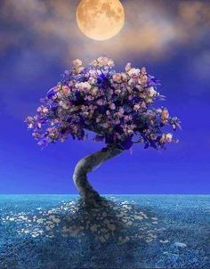 Breathtaking picture - Moon and magical tree.../ss