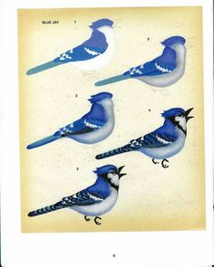 Album Archive - Decorative Painting_Birds in my Garden One Stroke Painting, Tole Painting, Painting & Drawing, Acrylic Painting Techniques, Painting Lessons, Watercolor Bird, Watercolor Paintings, Bird Paintings, Bird Drawings