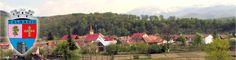 Primăria Talmaciu