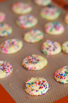 tiny cake batter sprinkled sugar cookies ... so long unfulfilled busken tea cookie cravings