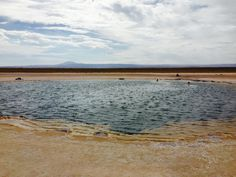 CEJAR Lagoon in San Pedro - 3x's salt content as the Ocean + loaded with lithium. SUPER relaxing - cold! But sooo much fun! #swimming #floating #chile