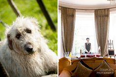 Bellingham Castle, Couple Photography, Wedding Photography, Bus Pass, Weddings, Couples, Animals, Animales, Animaux