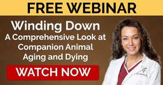 Join Dr. Karen Becker in a two-part webinar as she talks about aging and dying pets, and how you can provide the best care for them.