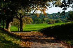 Road to Budeč by chiefak on 500px