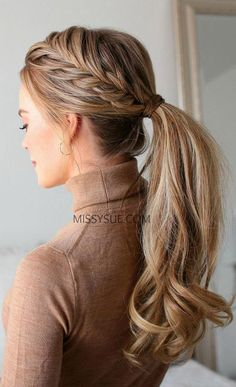 Braided Hairstyle Two Ponytail Braids and Fishtail